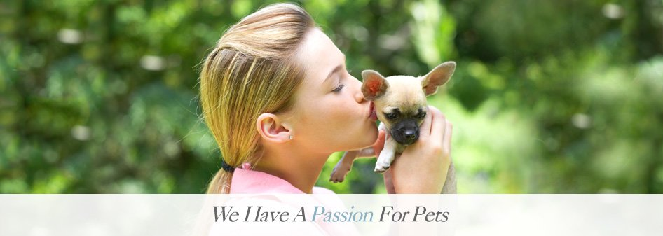 We Have A Passion For Pets