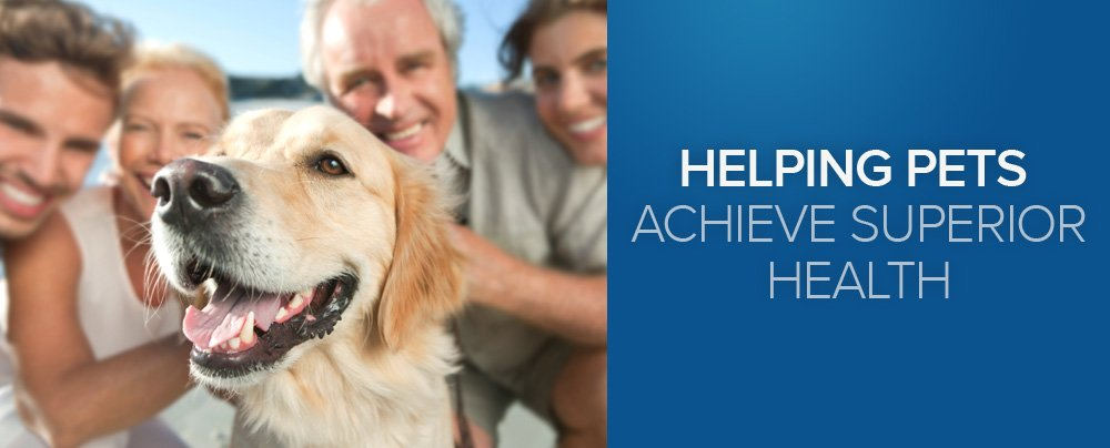 Helping Pets Achieve Superior Health