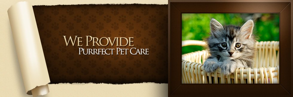 We Provide Purrfect Pet Care