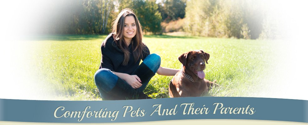 Comforting Pets And Their Parents