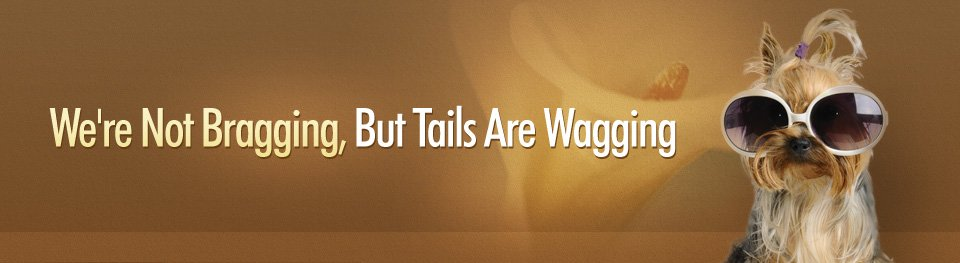 We're Not Bragging, But Tails Are Wagging