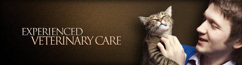 Experienced Veterinary Care