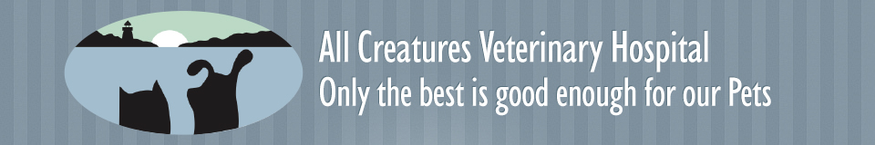All Creatures Veterinary Hospital