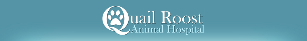 Quail Roost Animal Hospital