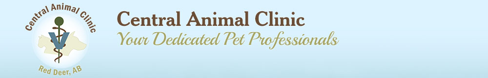 Central Animal Clinic