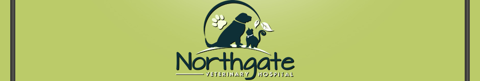Northgate Veterinary Hospital