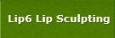 Lip6 Lip Sculpting