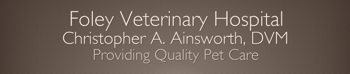 Foley Veterinary Hospital