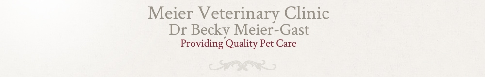 Meier Veterinary Clinic