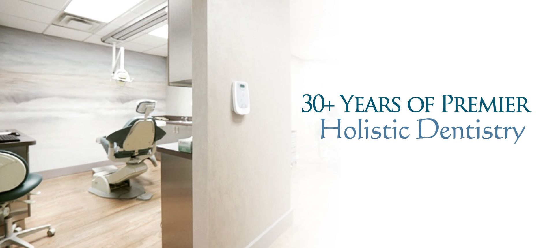 Dr Lewis Gross Holistic Dentist Nyc Holistic Dentistry